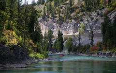 the SNAKE RIVER (laura's POV) Tags: autumn mountains fall nature river fishing cliffs rapids raft wyoming pinetrees angler snakerivergorge thesnakeriver lauraspointofview lauraspov