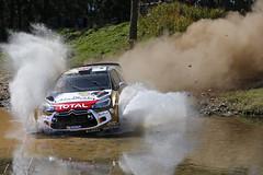 WRC AUSTRALIA 2014 (CITRON) Tags: world auto car championship rally citroen australia du racing des september wrc monde rallyes septembre gravel rallye motorsport australie rallying championnat ds3wrc