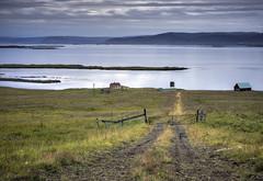 sheep farm (Arniesra) Tags: iceland farm
