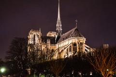 Notre Dame de Paris (Lonni.besançon) Tags: paris france notre dame de cathédrale cathedral church architecture ile la cité water bridge night sunset lights light colours colourful colors nightlight