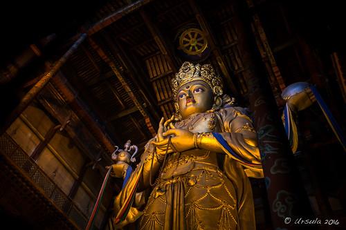 Standing Buddha 2250