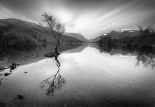 A Grey Day at Llyn Padarn