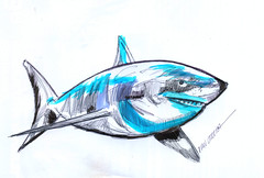 tiburon a lapicero (ivanutrera) Tags: draw dibujo drawing dibujoalapicero dibujoaboligrafo boligrafo sketch sketching shark tiburon animal sea seaworld ilustracion lapicero pen