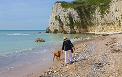 IMG_5205 (Martin P Perry) Tags: ocean sea cliff dog beach canon coast shore isleofwight coastline isle wight freshwater iow westwight freshwaterbay martinperry