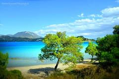 paradise on earth... (Dimitra Kirgiannaki search engine the whole spring) Tags: blue trees sea summer sky seascape colors clouds landscape greek photography greece loutraki dimitra nikond3100 kirgiannaki limnivouliagmeniskorinthias