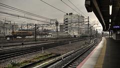 Rainy day in Kyoto JR station  . .Japan Kyoto . .  DSC_5152 (Ming - chun ( very busy )) Tags: travel station japan train nikon kyoto 28mm jr line trail rainy trainstation   nikkor f18    d800  28mmf18     traveljapan    nikon28mmf18 nikon28mm18 f1828mm
