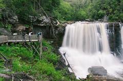 IMGP1123_edit (L.F.Lee) Tags: park forest nationalforest wv westvirginia monongahela nf