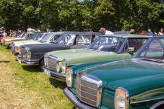 Oldtimermarkt Bockhorn 2014 - Mercedes-Reihe (www.nbfotos.de) Tags: auto car mercedes benz mercedesbenz 2014 automobil bockhorn oldtimermarkt w109 w108 oldtimertreffen