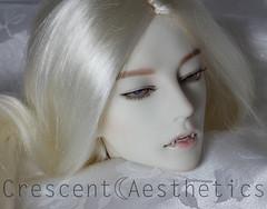 Soom Idealian Gluino Vampire Finished (miyukisetsu) Tags: face up vampire crescent bjd soom abjd aesthetics faceup idealian gluino miyukisetsu