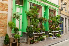 Bruges June 2014   12 (Winniepix) Tags: street flowers plants basket belgium display stall foliage hanging florist greenery colourful