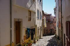 Estrada Lisboa... (Jos Pestana) Tags: portugal europa europe euro lisboa lisbon sony sonynex jospestana