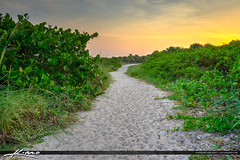 Fort Pierce Inlet State Park along the path (Captain Kimo) Tags: sunset fortpierce stluciecounty photomatixpro hdrphotography fortpierceinletstatepark captainkimo