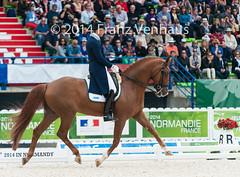 140827_Dressage_GPS_1726.jpg (FranzVenhaus) Tags: horses france fei normandie fra caen weg dressage