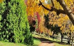 4444 Tumut Road, Batlow NSW