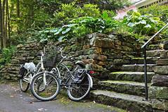 Chautauqua Institution (zackz241) Tags: stonewall naturalstone latesummer chautauquainstitution stonestaircase bikesny