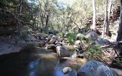 Wotl Mt Mackenzie Road, Bryans Gap NSW