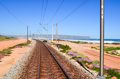 Sishen-Saldanha iron ore railway and the white sand dunes of Elands Bay (jbdodane) Tags: elandsbaai africa alamy141014 bicycle cycletouring cycling cyclotourisme day659 elandsbay ironore ironoreline railway sishensaldanharailway southafrica spoornet train transnet velo westerncape alamy freewheelycom jbcyclingafrica