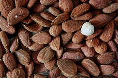 Nuts ◆◆39/52◆◆ مكسرات (Amalid) Tags: closeup canon nuts almond selftaught 2014 لوز 52weeks selftaughtphotographer مكسرات canoneos450d بندق canoneosdigitalrebelxsi efs1855mmisf3556 52projet 522014 2014in52 52صورة 2014in52photos مشروع52صورة 522014week39