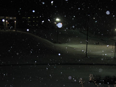 Light Bounced off Snow (Lunken Spotter) Tags: snowflake winter light snow cold college ice night buildings dark campus snowflakes lights frozen education university frost darkness snowy kentucky ky dorm flash snowstorm structures frosty nighttime icicle volleyball snowing colleges icy wintertime dormitory snowfall blizzard icicles nku volleyballcourt winterstorm dorms snowed dormitories snows snowfalls wintry highereducation snowstorms universities blizzards bounced highlandheights northernkentuckyuniversity northernkentucky campuses