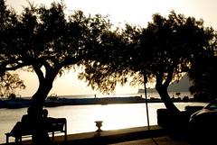 A Cretan Odyssey - Overseeing a Silver Sea (antonychammond) Tags: trees sea mediterranean silhouettes greece crete greekislands autofocus plakias photosandcalendar gnneniyisithebestofday virtualjourney saariysqualitypictures natureandpeopleinnature vpu1 magicmomentsinyourlife magicmomentsinyourlifelevel2 magicmomentsinyourlifelevel3