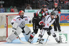 "DEL15 Kölner Haie vs. Thomas Sabo Ice Tigers 19.09.2014 011.jpg • <a style=""font-size:0.8em;"" href=""http://www.flickr.com/photos/64442770@N03/15291901095/"" target=""_blank"">View on Flickr</a>"