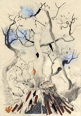 Alte Eiche (heiko ELIAS friedrich) Tags: collage natur pflanzen elias grafik heiko friedrich zeichnung realismus wachsen organisch gegenstndlich