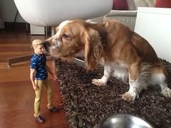 My dog meets Ken. (kenDollGT) Tags: