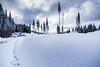 20161228-DSC08379.jpg (RunningTheCascades) Tags: rattlesnakeridge rattlesnakemountain snow snowtrails snowdunes