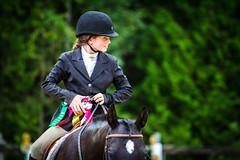 Horse Show (JustJamieLeigh) Tags: horse horses horseshow horsebackriding horseback equestrian equines equine english riding show englishriding canon60d canon 60d competition