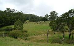 - DODDS Road, Nowendoc NSW