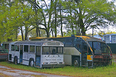 Old Buses (gg1electrice60) Tags: railroad bus buses tracks trains railcar mow junkyard recycling ocala rightofway recyclingcenter motorcar speeders scrapmetaldealer oldbuses maintenanceofway regionaltransitsystem narcoa salvagecompany floridacentralrr northamericanrailcaroperatorsassociation