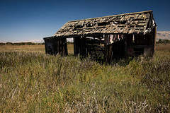 (Abel AP) Tags: california usa building abandoned grass decay fremont sanfranciscobayarea wetlands ghosttown drawbridge donedwardsnationalwildliferefuge abelalcantarphotography