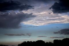 sky paradise #5