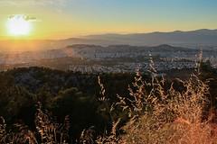 CV1P7933 (Nasos Efstathiadis Photography) Tags: athens  ymittos