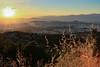 CV1P7933 (Nasos Efstathiadis Photography) Tags: athens βουνό ymittos αθήνα πανοραμική υμητόσ