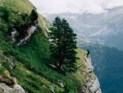 DSCF2221 (tothandras) Tags: mountains alps switzerland zermatt