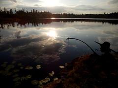 Huckleberry Finn an einem kleinen schwedischen See (fotoculus) Tags: schweden wolken småland sverige nwn abendstimmung wolkenspiegelung