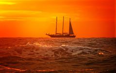DSCN7029 sailing away (pinktigger) Tags: sunset sea holland netherlands beautiful dutch ship superb scheveningen awesome nederland northsea nosmoking applause loveforever lookat royalgroup goldengroup sunrays5 flickronmymind freedomhasnoprice