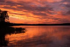 Sunset explosion (Storkholm Photography) Tags: sunset summer lake reflection silhouette night clouds 50mm mirror evening nikon europe cloudy sweden explosion scandinavia 50mmf14 mälaren d610 mariefred södermanland hästnäs