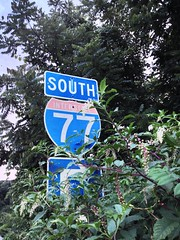 I-77 South sign engulfed with tree branches. (tranchristopher5) Tags: street blue trees sunset summer sky urban leaves lines station sign rural lights store sticks suburban dusk south gas pole foliage electrical bushes entangled i77 engulfed