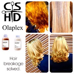 "Olaplex http://www.christinasanchezhairdesign.com • <a style=""font-size:0.8em;"" href=""http://www.flickr.com/photos/69107011@N07/14849033378/"" target=""_blank"">View on Flickr</a>"
