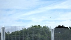 Military helicopter over Cardiff for Nato Summit (DJLeekee) Tags: southwales wales military cardiff security helicopter newport merlin summit westland nato mk3