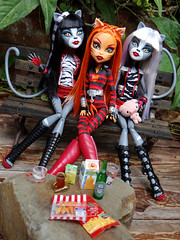 Monster High (onion4797) Tags: monster high doll