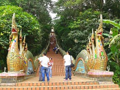 Step Up To The Temple (stardex) Tags: thailand temple dragon staircase chiangmai doisuthep watphrathatdoisuthep stardex