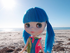 Beau at the beach!