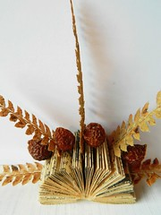 the nature of a book (Judylemezis) Tags: book folded ferns folding bookarts bookpages