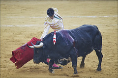 Jose Tomas 0245 (likamccuntz) Tags: feria bullfight malaga malagueta matador tauromaquia corridadetoros josetomas