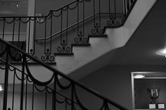 The Landing (MPnormaleye) Tags: bw detail monochrome architecture stairs vintage design blackwhite shadows decorative patterns landing staircase utata ironwork railing elegant delicate deco bannister