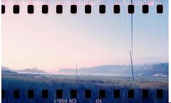 Grasses in La Jolla (bc50099) Tags: gloaming sprockets