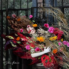 EXPERIENCING THE FALL (Silvia Andreasi (Images Beyond Mirror)) Tags: flowers red woman art fall leaves hair whimsy wind surrealism surreal falling fabric fantasy forgotten squareformat ethereal mystical emotions challenge mystic whimsical dreamscape symbolism fineartphotography conceptualphotography creativeartphotography whimsicalphotography imagesbeyondmirror silviaandreasi